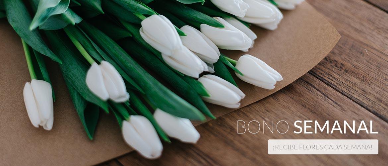 Bono flores cada semana