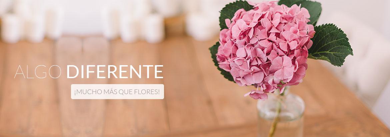 Floristerias en Mostoles
